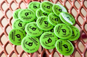 2013 Promise Buttons